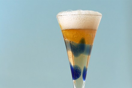 Scotch-Champagne fizz