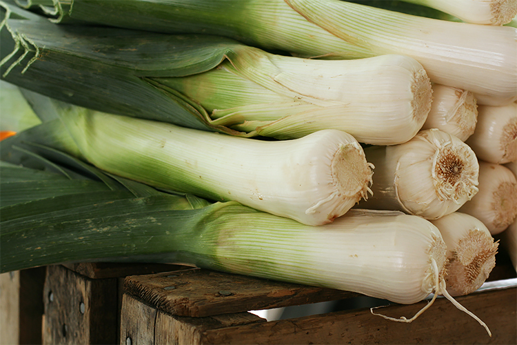 Leeks at the farmer's market