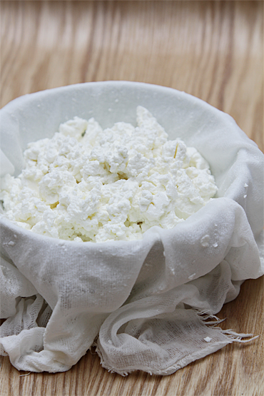 Homemade fresh goat cheese