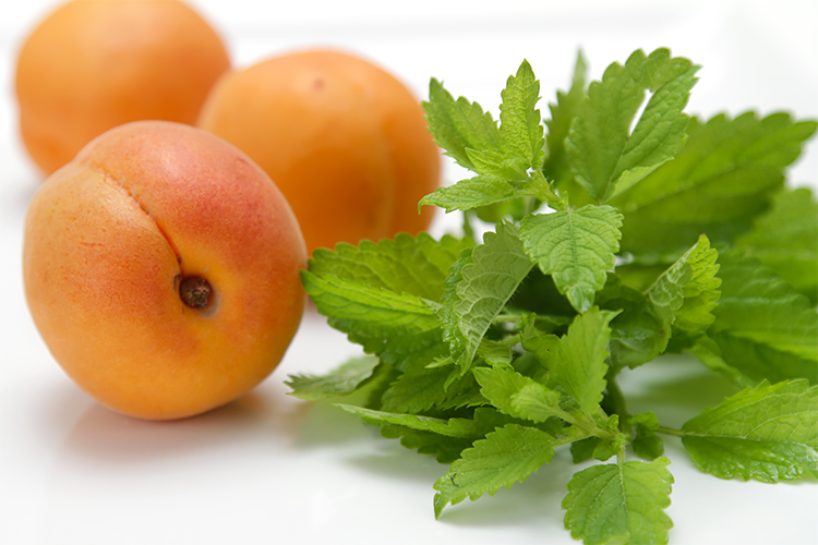 Apricots and lemon balm