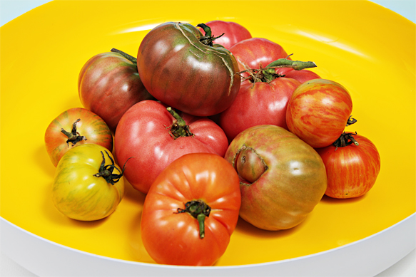 Heirloom tomatoes in yellow bowl