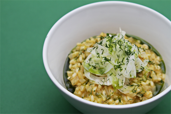 Fennel risotto with fennel-infused oil