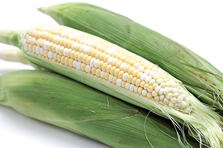 In their husks grilled corn on the cob food style in their husks grilled corn on the cob ccuart Gallery