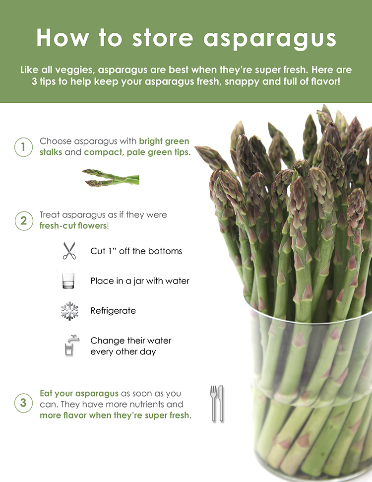 How to store asparagus - Infographic